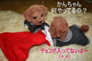 かんちゃん、それ違うから(^_^;)