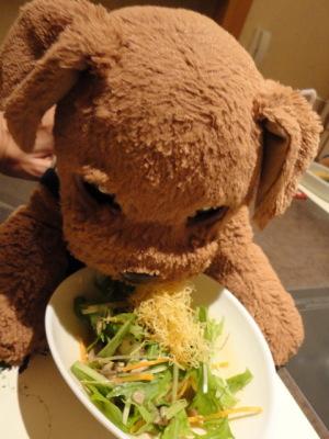 ボク、サラダ好きなんだよ