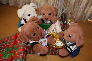 ゴージャスなクリスマスBox